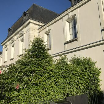 HYPER CENTER SAINT CYR SUR LOIRE CHARMING HOUSE GARDEN CELLAR DOUBLE GARAGE